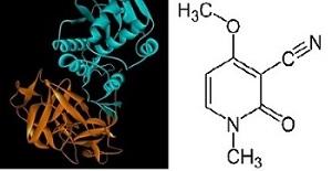 синтез рицина в домашних условиях